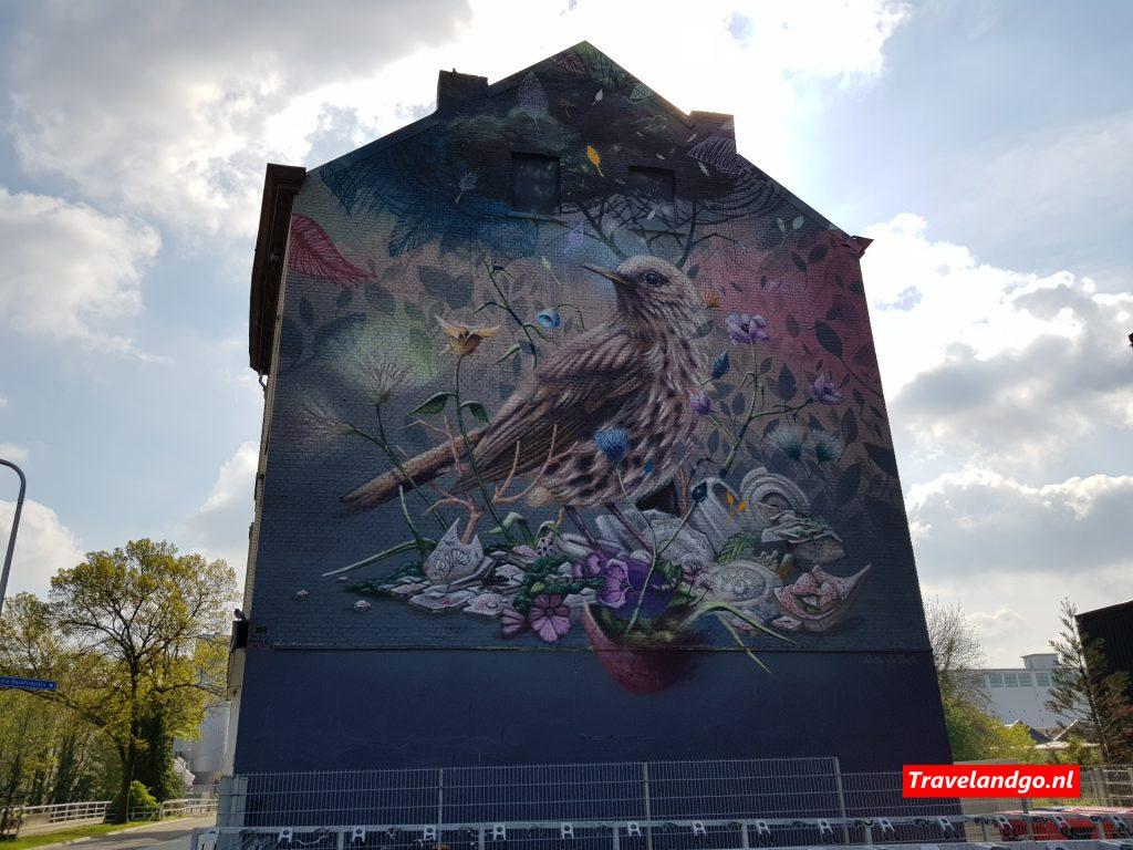 Street art Maastricht