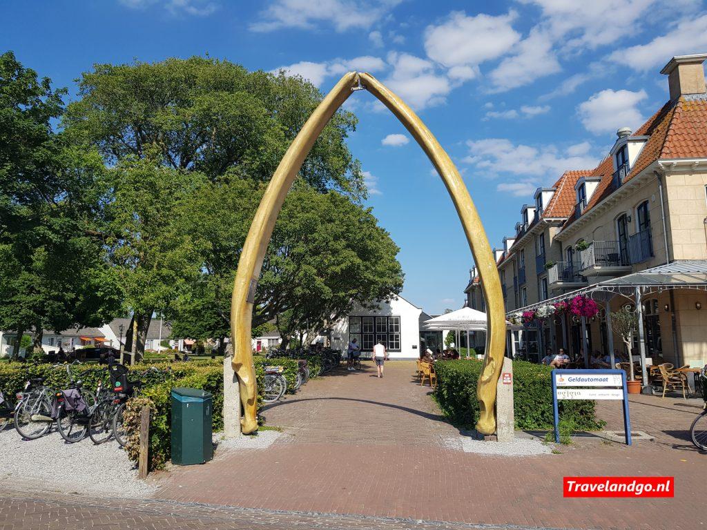 Walviskaak Schiermonnikoog
